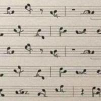 Sexo y Música
